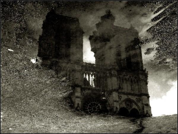 reflets eau NDAME PARIS