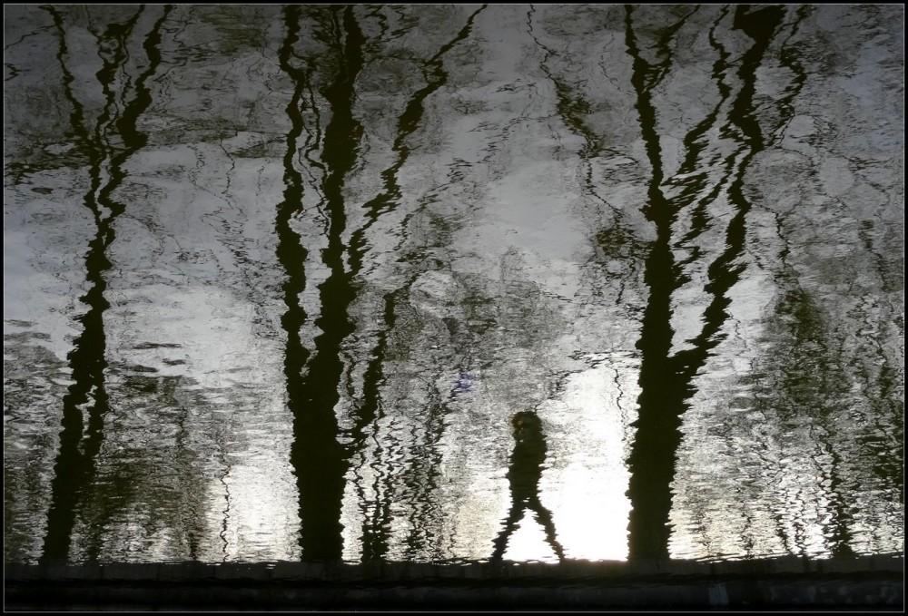 Les reflets de la vie ~ 3