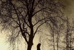 Solitudes   6