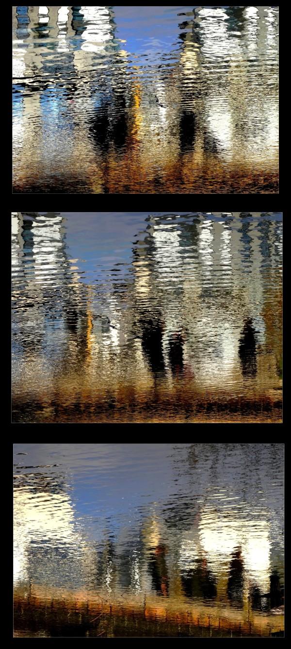 Les reflets de la vie ~ 6