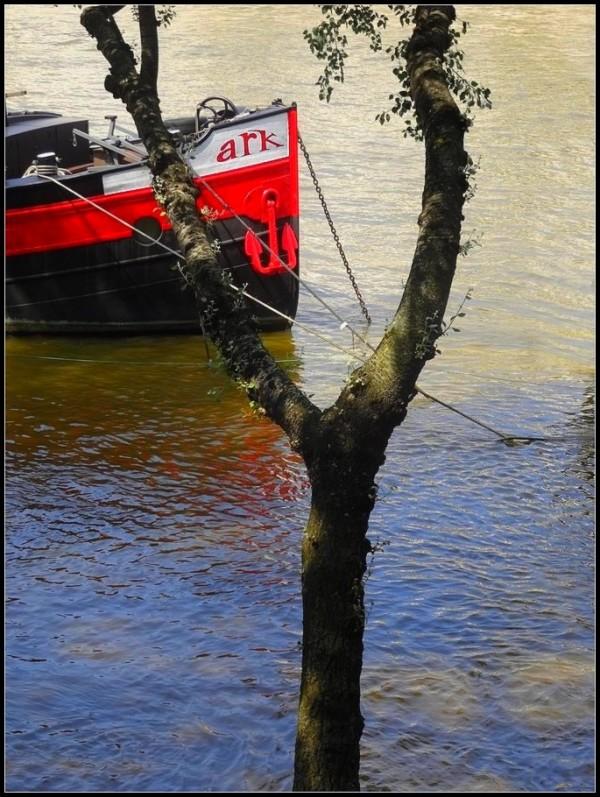 L'Ark - en - Seine