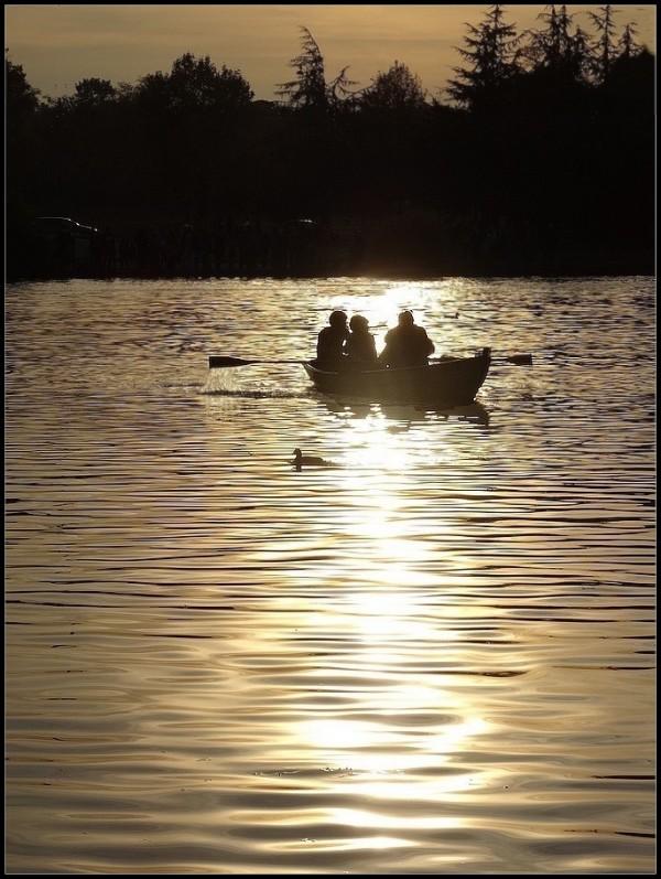L'or du lac ~  2