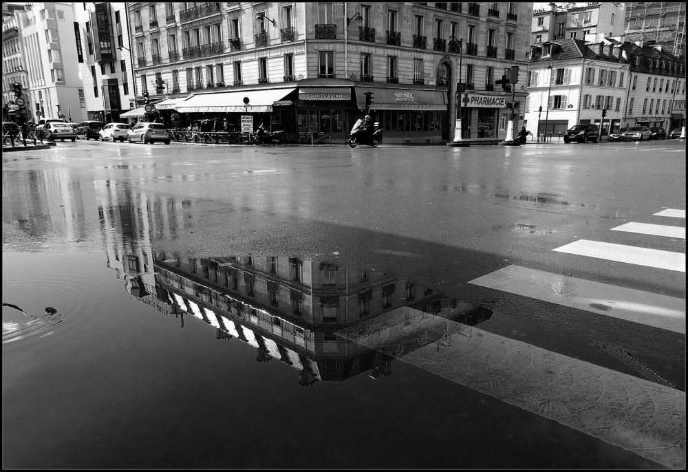 Après la pluie ~ 7