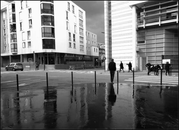 Après la pluie ~ 6