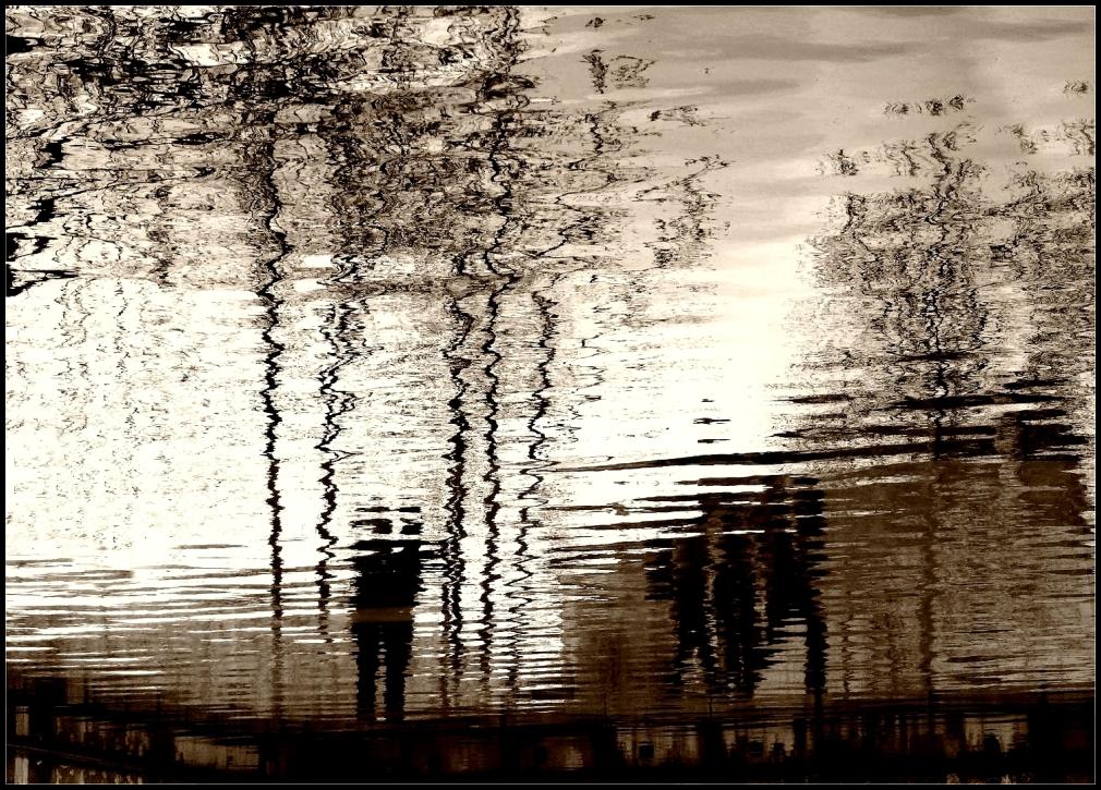 Les reflets de la vie ~ 8