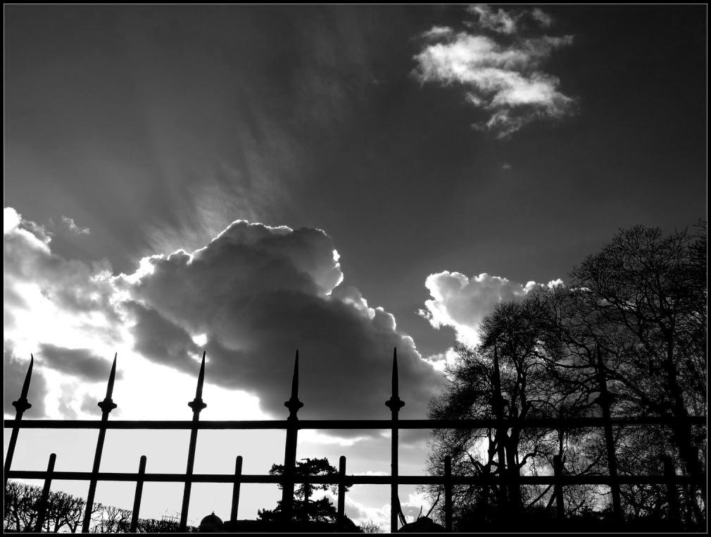 Le ciel par-dessus les grilles