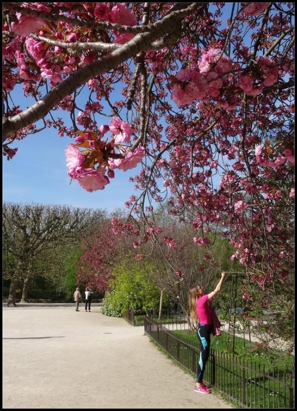 La vie en rose ~ 3