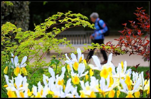 Trekking au Jardin des plantes