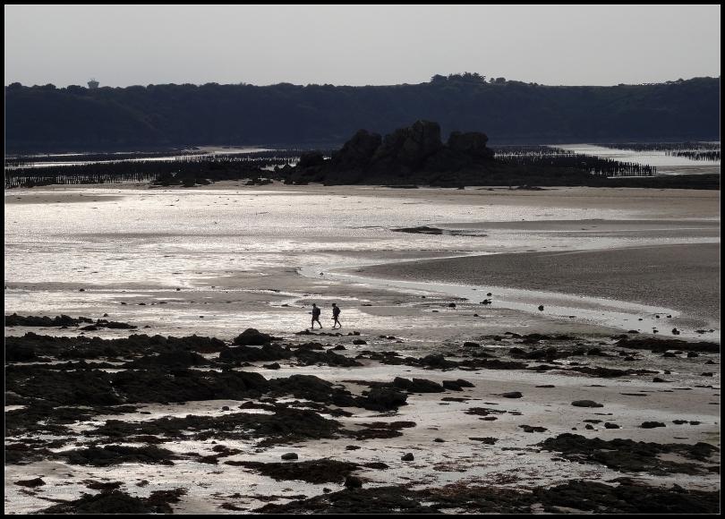Sur la plage à marée basse ~ 1