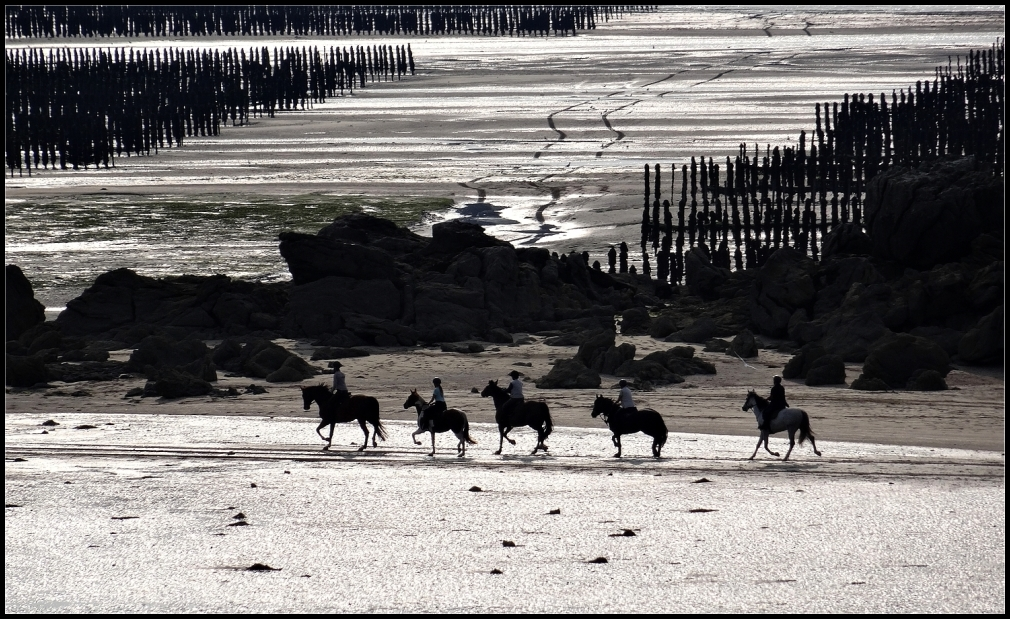 Sur la plage à marée basse ~ 2