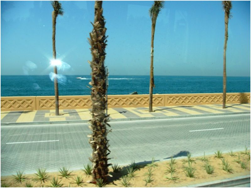 Speed boat off Palm Jumeirah Island