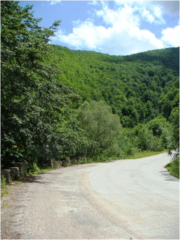Country road in Apuseni Mountains
