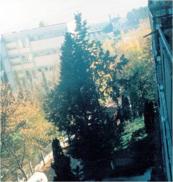 1995 06 From the Balcony on Baisoara Street