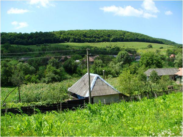 2009 07 13 Vale Village