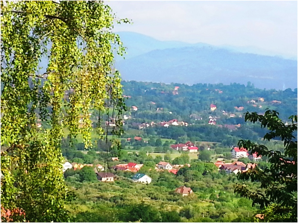 2013 07 10 Bran Romania
