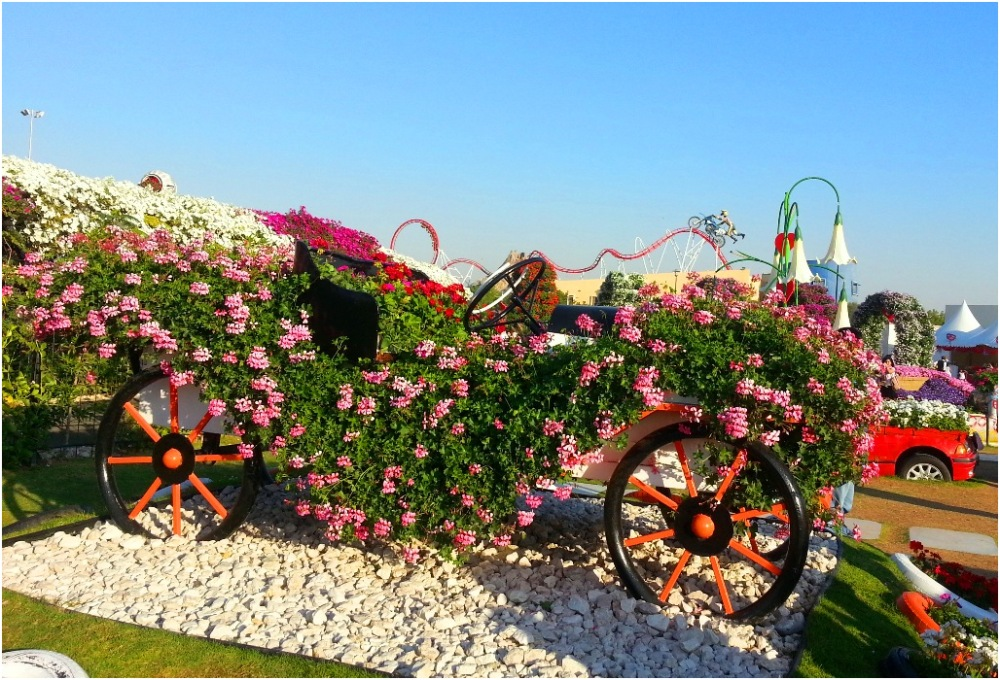 2014 02 15 Dubai Miracle Garden