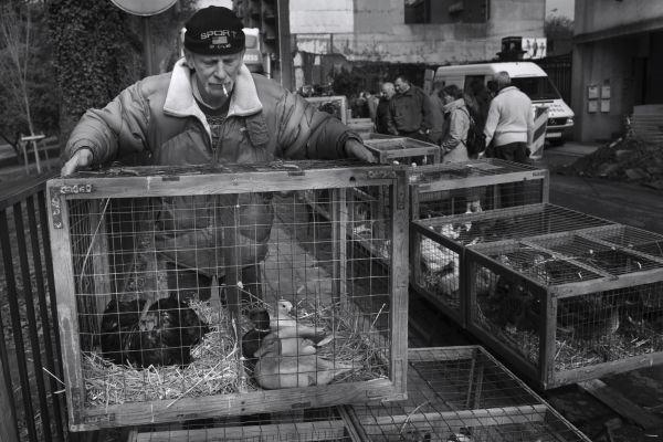 un vendeur au marché du dimanche matin à Charleroi