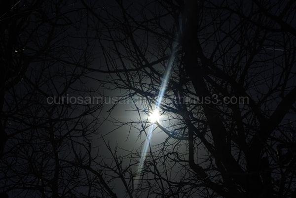 Rayo de luz