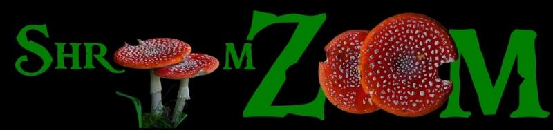 ShroomZoom
