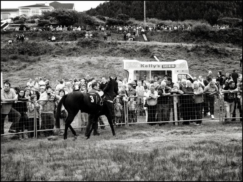 horse racing kerry ireland