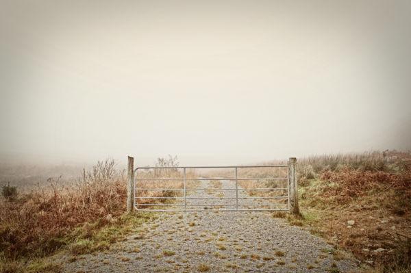 gate wild wilderness empty fog dream mist
