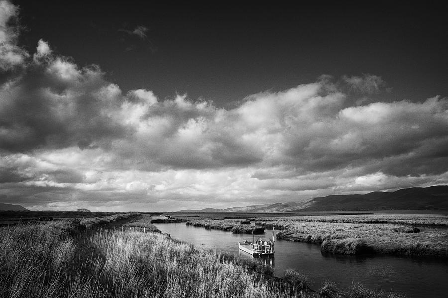 killorglin oyster beds kerry Ireland