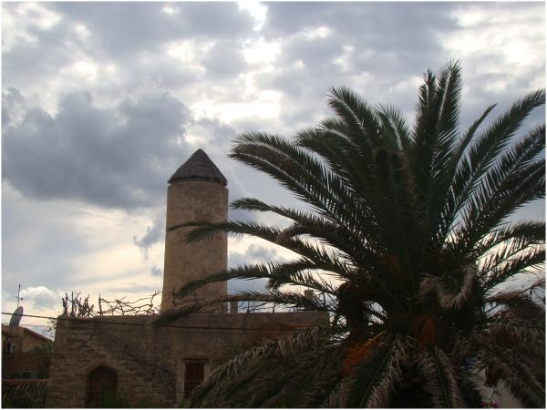 Colònia de Sant Pere - Es Molí