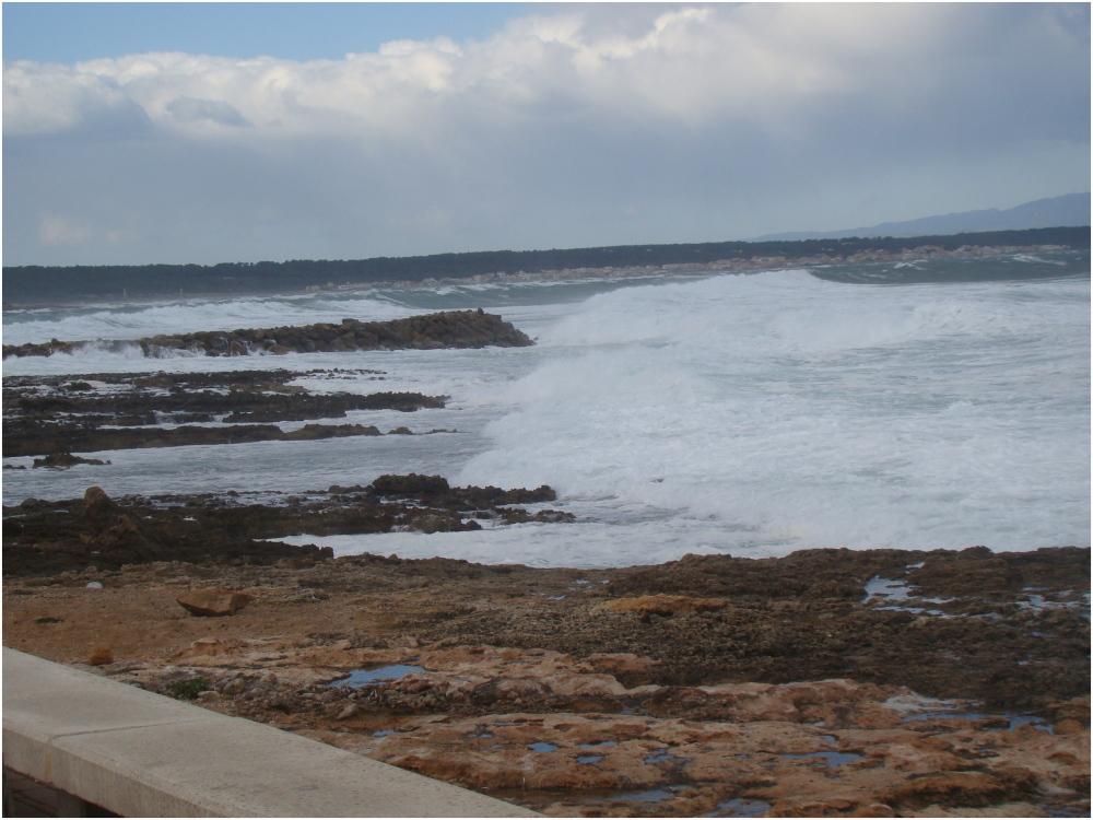 Colònia de Sant Pere Tempesta Febrer 2013