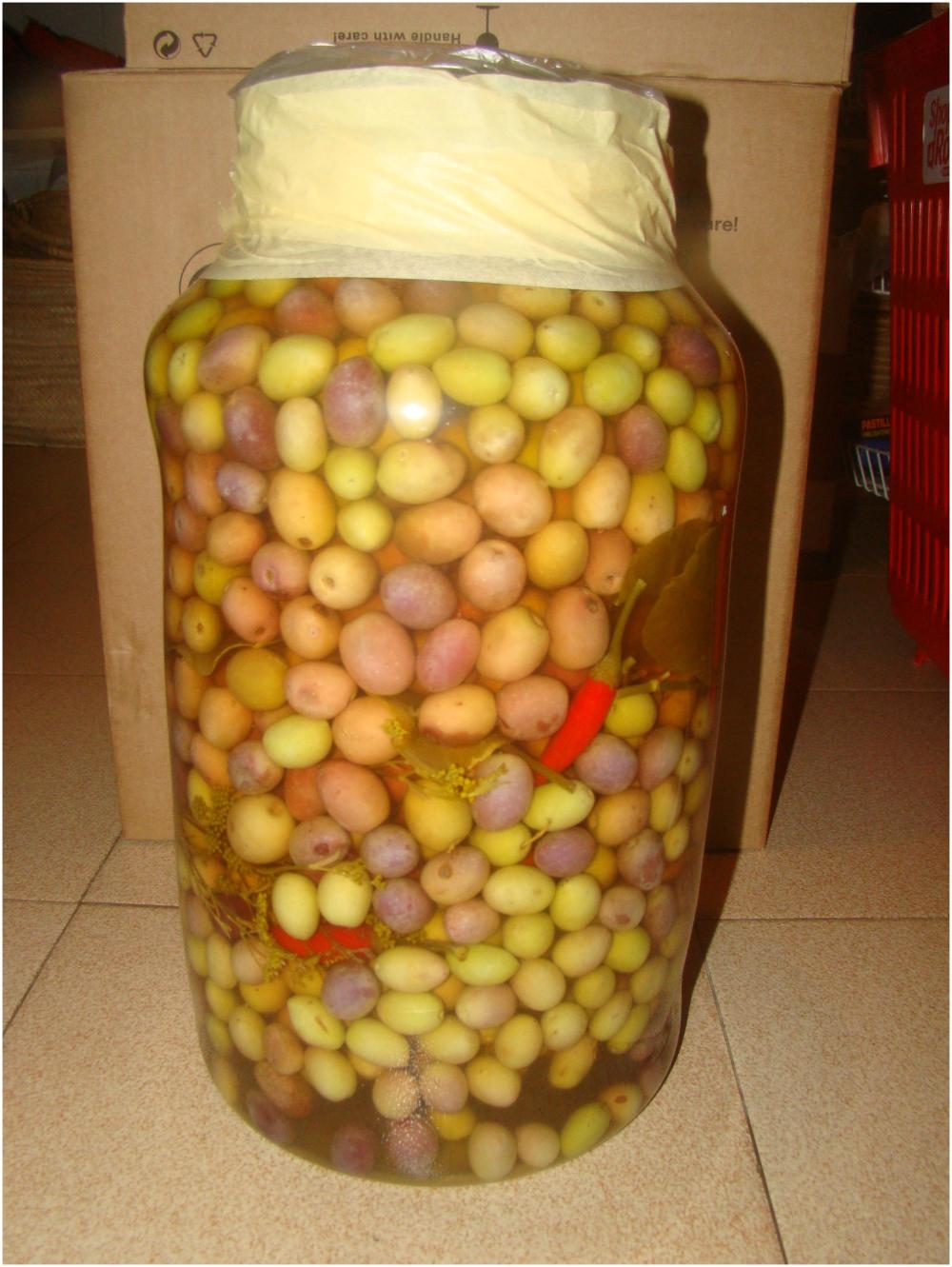 Olives de Caimari