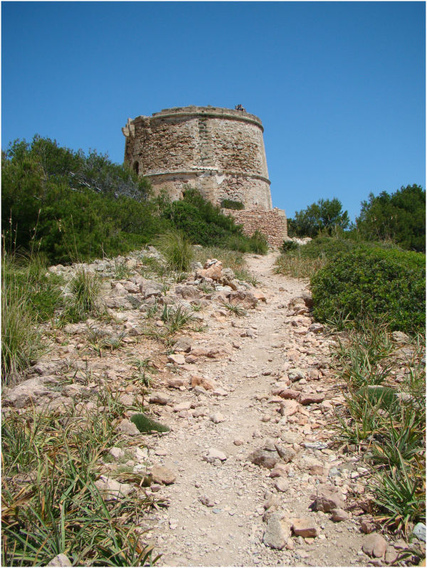 Torre Albarca - Es Matzoc (Artà - Illes Balears)
