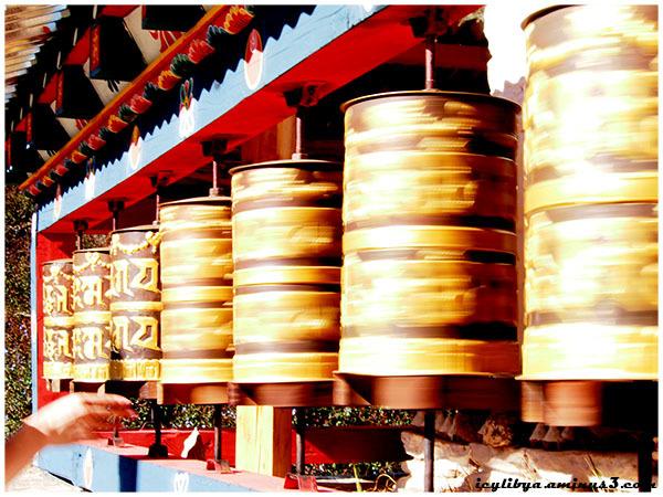 Mani wheel