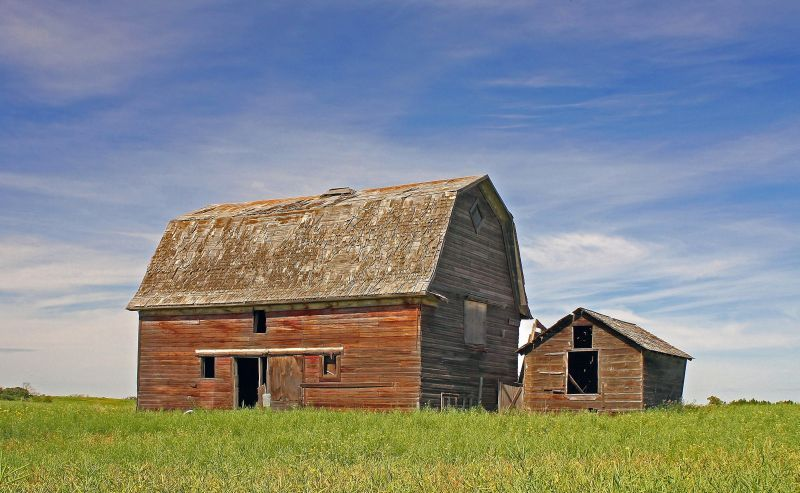 The Barn and Shed
