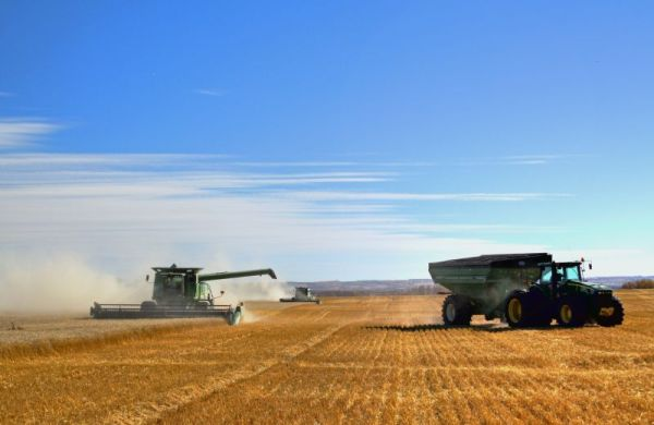 Busy Harvesting
