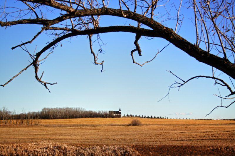 Field of Faith