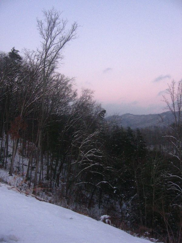 Snow on the Slopes of the Smokies