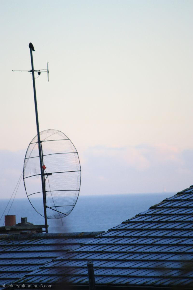 Radio Roof