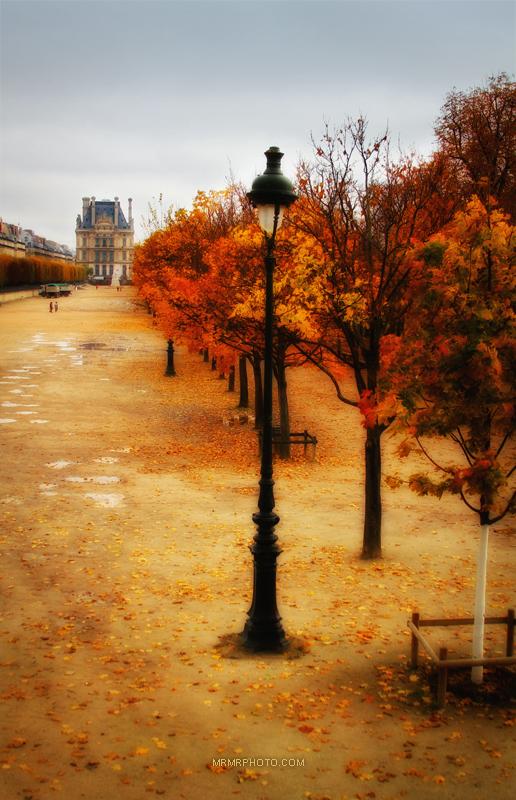 Louvre museum | Paris