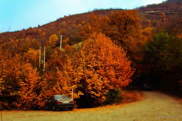 Autumn in the north of Iran