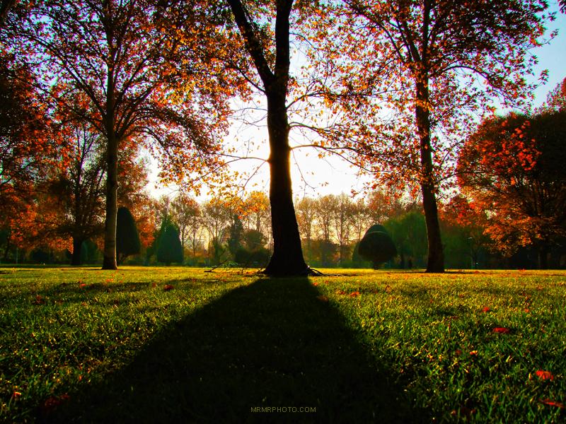 Laleh park in autumn