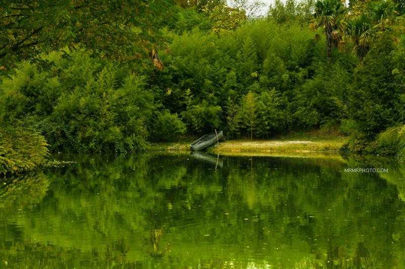 Lake in Disey Land