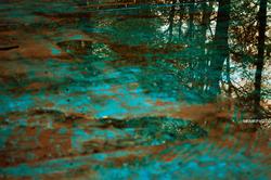 Pool in Rasht