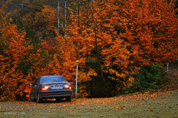 Mazandaran in Fall