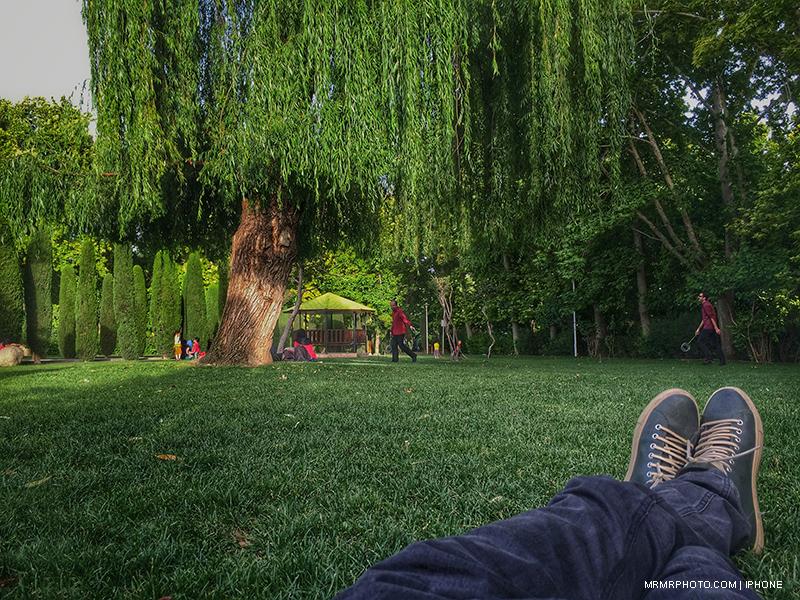 Laleh Park in Tehran