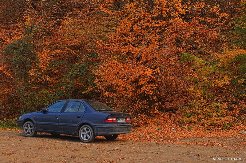 Autumn in mazandaran
