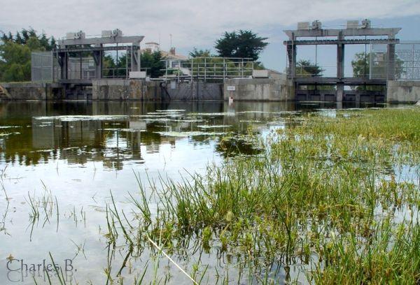 Chartran, 5 juin 2008