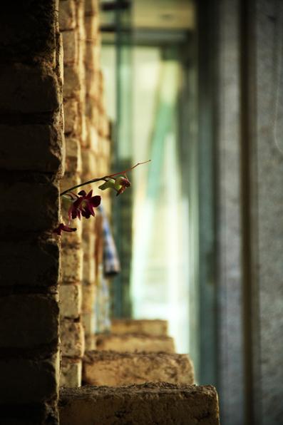 آموز آباد- دست تهی گل بر می افشانم92.5.10