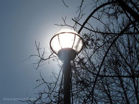 sun in lamp