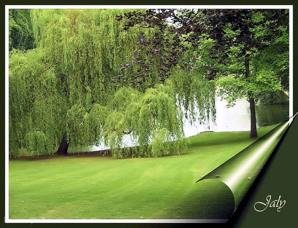 Vue des étangs d'Ixelles