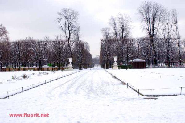 Tuileries Gardens in Paris under snow