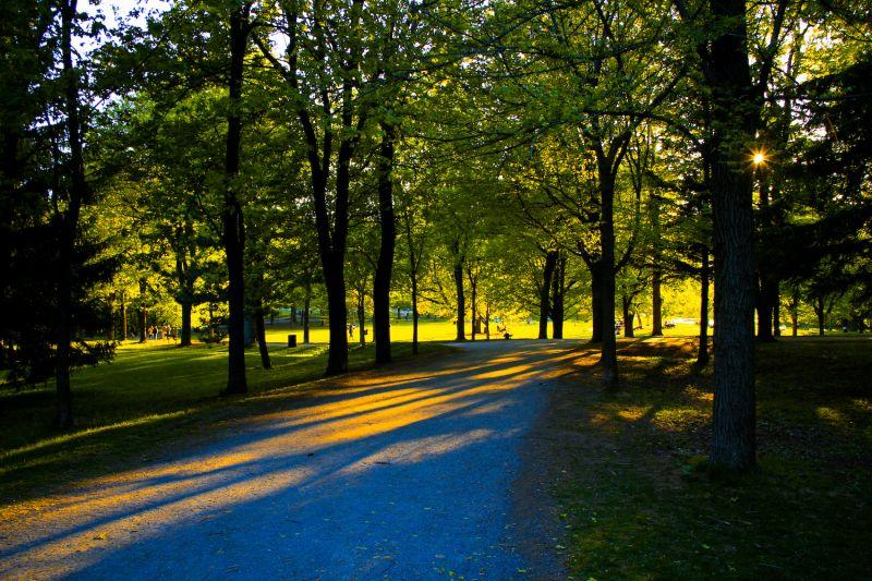 Park Mont Royal